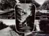 groeten-uit-haarle-98